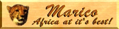 Click on the banner to go to the Marico Website